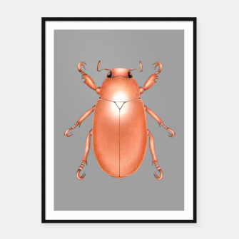 Copper Beetle (Grey Background) Framed poster thumbnail image
