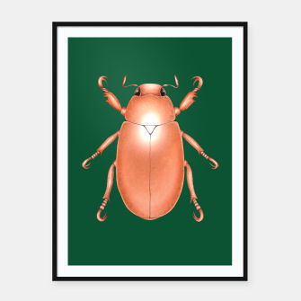 Thumbnail image of Copper Beetle (Green Background) Framed poster, Live Heroes