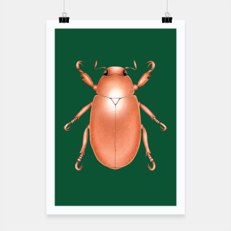 Thumbnail image of Copper Beetle (Green Background) Poster, Live Heroes