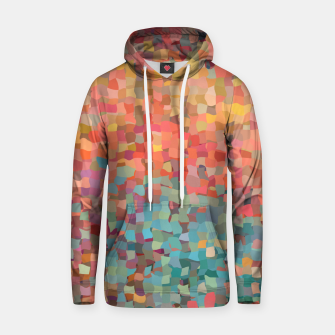 Thumbnail image of Chaos Color Hoodie, Live Heroes