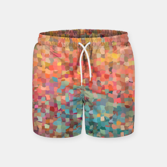 Miniature de image de Chaos Color Swim Shorts, Live Heroes