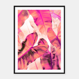 Thumbnail image of Pink Nirvana Framed poster, Live Heroes