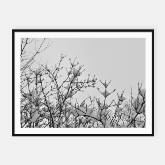 Miniaturka Snow on branches Framed poster, Live Heroes