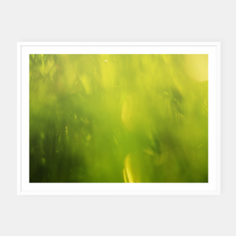 Thumbnail image of Grass Texture Framed poster, Live Heroes