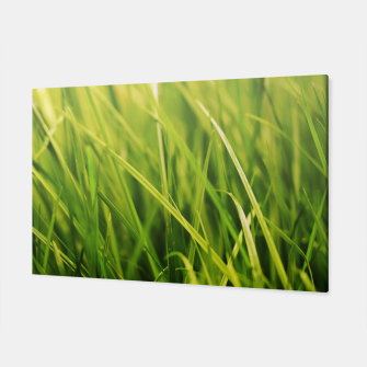 Thumbnail image of Grass Texture Canvas, Live Heroes
