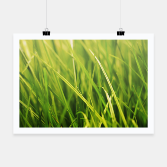 Thumbnail image of Grass Texture Poster, Live Heroes