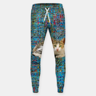 Thumbnail image of Cat on abstract background Hosen, Live Heroes