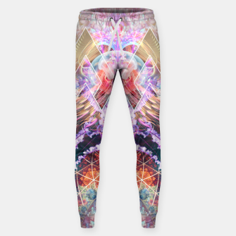 Thumbnail image of Primordial Soup Sweatpants, Live Heroes