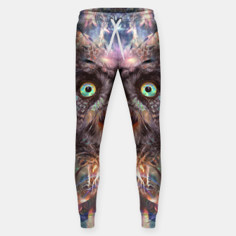 Thumbnail image of Complete Awareness (Owl) Sweatpants, Live Heroes