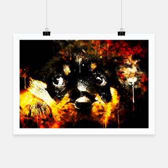 rottweiler puppy dog ws std Poster thumbnail image