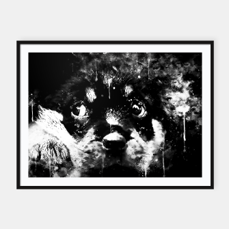 rottweiler puppy dog ws bw Framed poster thumbnail image