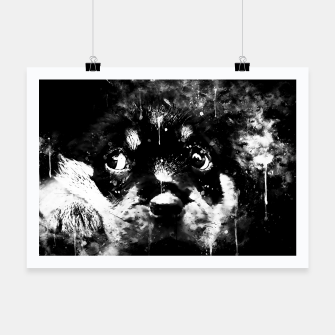 rottweiler puppy dog ws bw Poster thumbnail image