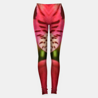 Thumbnail image of Red Flower Leggings, Live Heroes