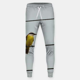 Great kiskadee Sweatpants thumbnail image