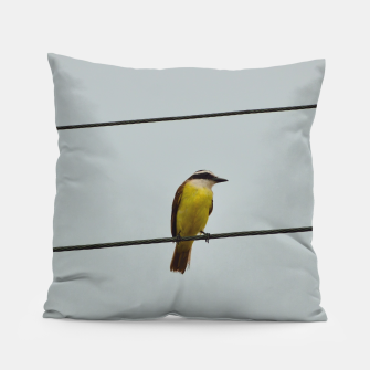 Great kiskadee Pillow thumbnail image