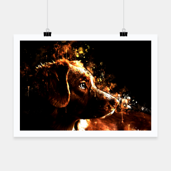 retriever dog ws std Poster thumbnail image