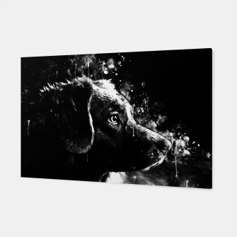 retriever dog ws bw Canvas thumbnail image