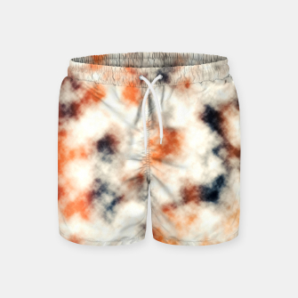 Multicolored Abstract Print Swim Shorts thumbnail image