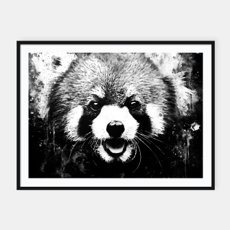 red panda portrait ws bw Framed poster thumbnail image