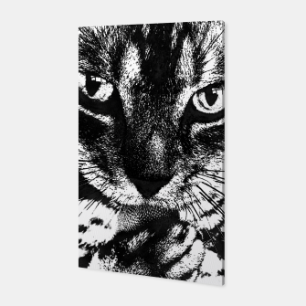cat 1 black&white Canvas thumbnail image