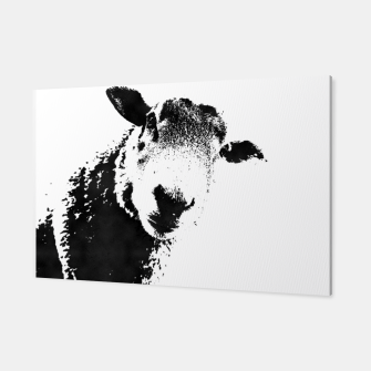 Thumbnail image of sheep black&white Canvas, Live Heroes