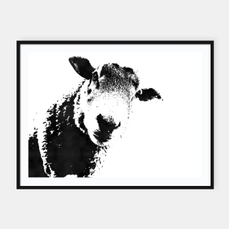 Thumbnail image of sheep black&white Plakaty w ramie , Live Heroes
