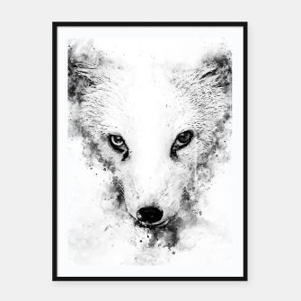 arctic fox bicolor eyes ws bw Framed poster miniature