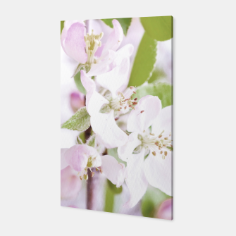 Thumbnail image of Apple Tree Blossoms Canvas, Live Heroes