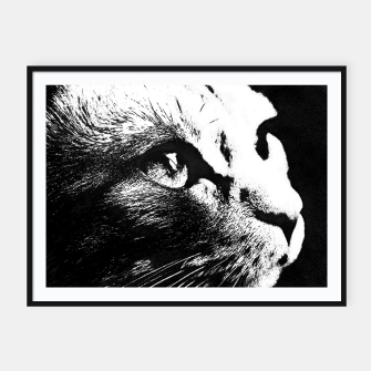 Thumbnail image of cat black&white Plakaty w ramie , Live Heroes