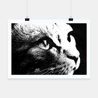 Thumbnail image of cat black&white Plakat, Live Heroes