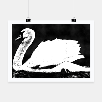 Thumbnail image of swan black and white Plakat, Live Heroes