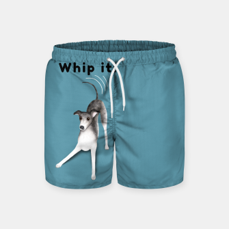 Miniature de image de Whip it! (Blue-Grey) Swim Shorts, Live Heroes