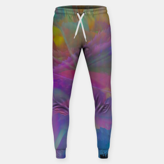 Thumbnail image of 014 Sweatpants, Live Heroes