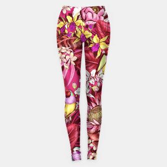 Thumbnail image of Red Birds Leggings, Live Heroes