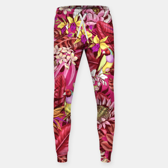 Thumbnail image of Red Birds Sweatpants, Live Heroes