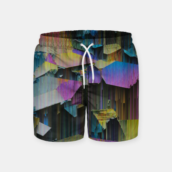Thumbnail image of 018 Swim Shorts, Live Heroes