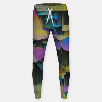 Thumbnail image of 018 Sweatpants, Live Heroes
