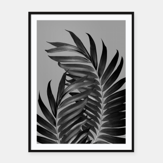 Thumbnail image of Palm Leaves Gray Black Vibes #1 #tropical #decor #art Plakat mit rahmen, Live Heroes