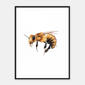 Thumbnail image of wasp Framed poster, Live Heroes