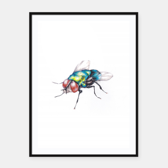 Thumbnail image of fly Framed poster, Live Heroes