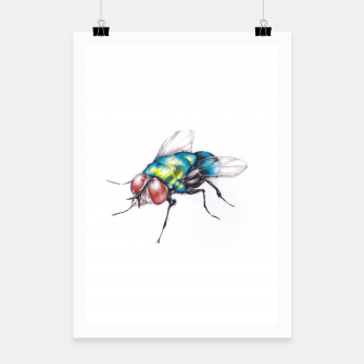 Thumbnail image of fly Poster, Live Heroes