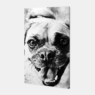 Thumbnail image of happy pug dog wsbw Canvas, Live Heroes