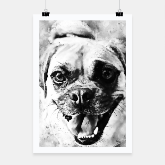 Thumbnail image of happy pug dog wsbw Poster, Live Heroes