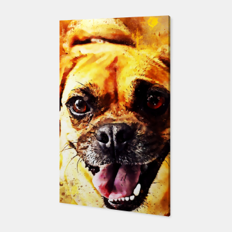 Thumbnail image of happy pug dog wsstd Canvas, Live Heroes
