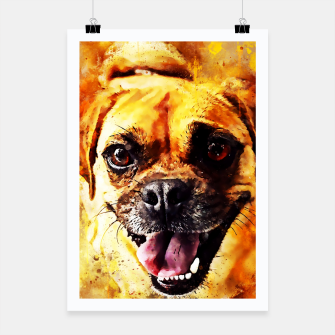 Thumbnail image of happy pug dog wsstd Poster, Live Heroes