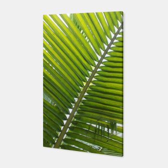 Thumbnail image of green leaves Canvas, Live Heroes