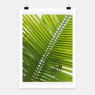 Thumbnail image of green leaves Plakat, Live Heroes