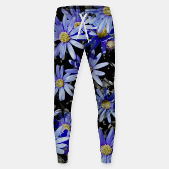 Thumbnail image of Daisies On Grey Sweatpants, Live Heroes