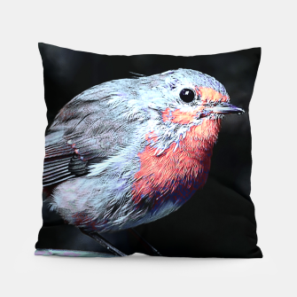 Thumbnail image of Robin Pillow, Live Heroes