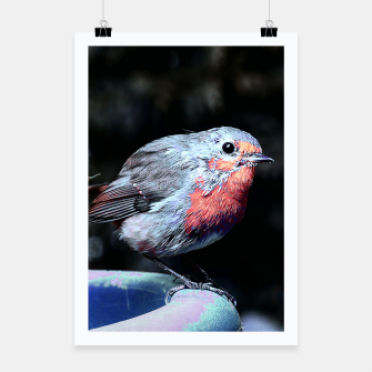 Thumbnail image of Robin Poster, Live Heroes